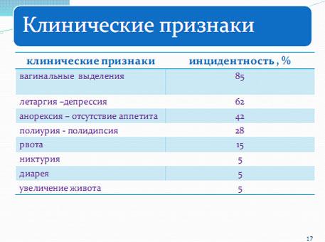 Слайд 16. Клинические признаки пиометры