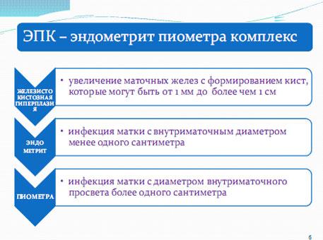 Слайд 3. ЭПК - эндометрит + пиометра = комплекс