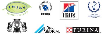 Регистрация на мастер класс по стоматологии в г. Ростове-на-Дону