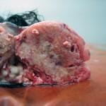 Остеосаркома у ризеншнауцера (13 лет): Макрофото