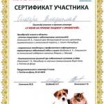 Ольберг - Сертификат